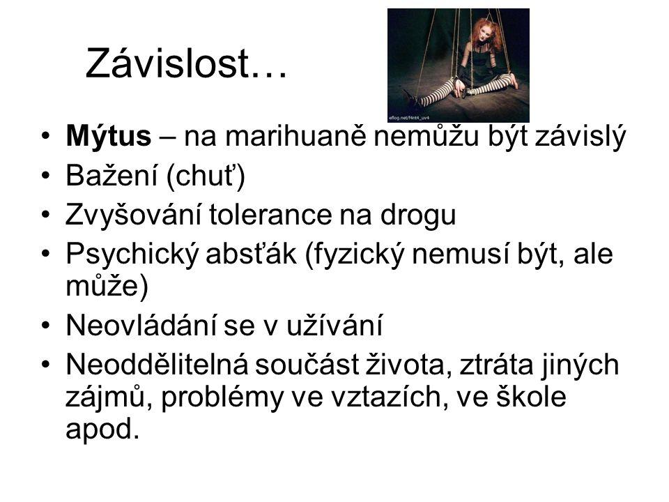 Závislost… Mýtus – na marihuaně nemůžu být závislý Bažení (chuť)
