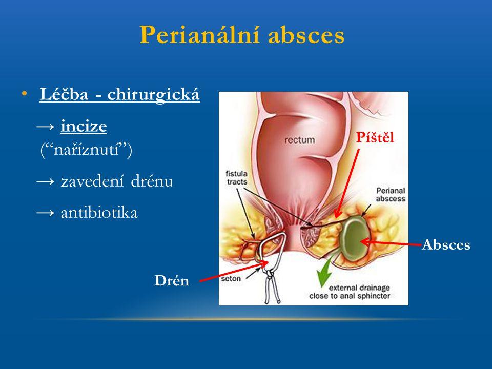 Perianální absces Léčba - chirurgická → incize ( naříznutí )