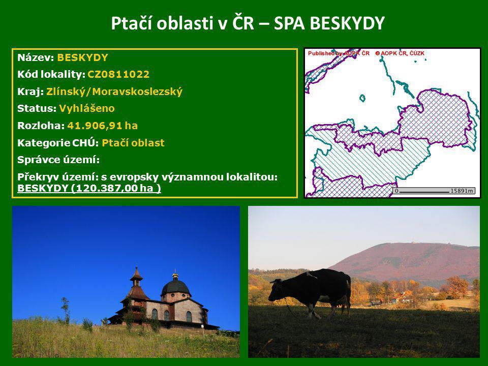 Ptačí oblasti v ČR – SPA BESKYDY