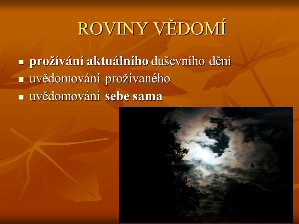 ROVINY VĚDOMÍ prožívání aktuálního duševního dění