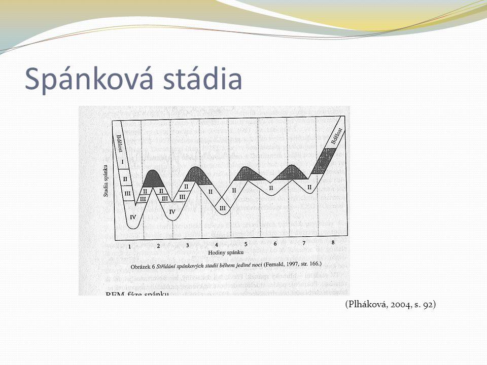 Spánková stádia (Plháková, 2004, s. 92)