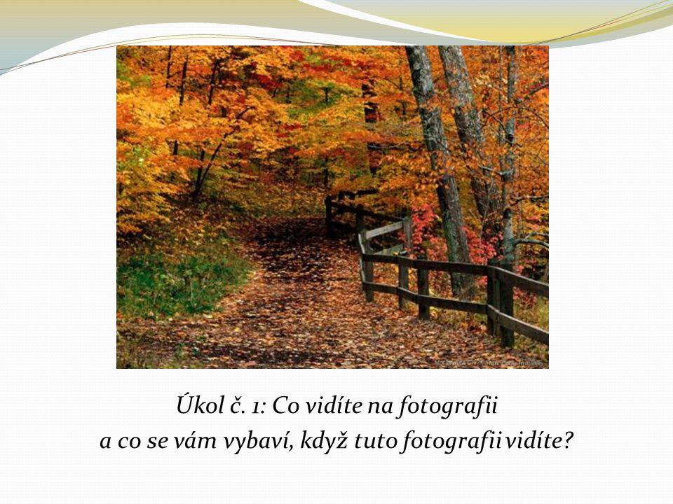 Úkol č. 1: Co vidíte na fotografii a co se vám vybaví, když tuto fotografii vidíte