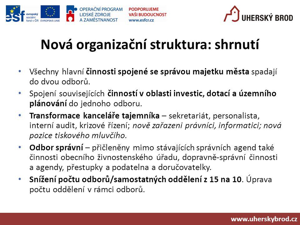 Nová organizační struktura: shrnutí