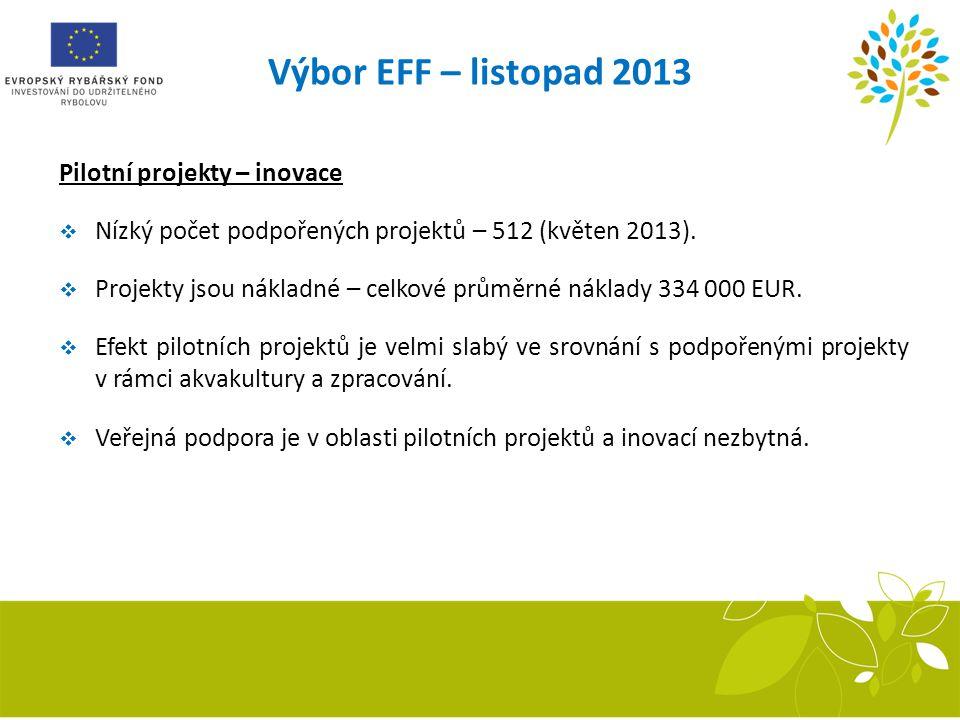 Výbor EFF – listopad 2013 Pilotní projekty – inovace