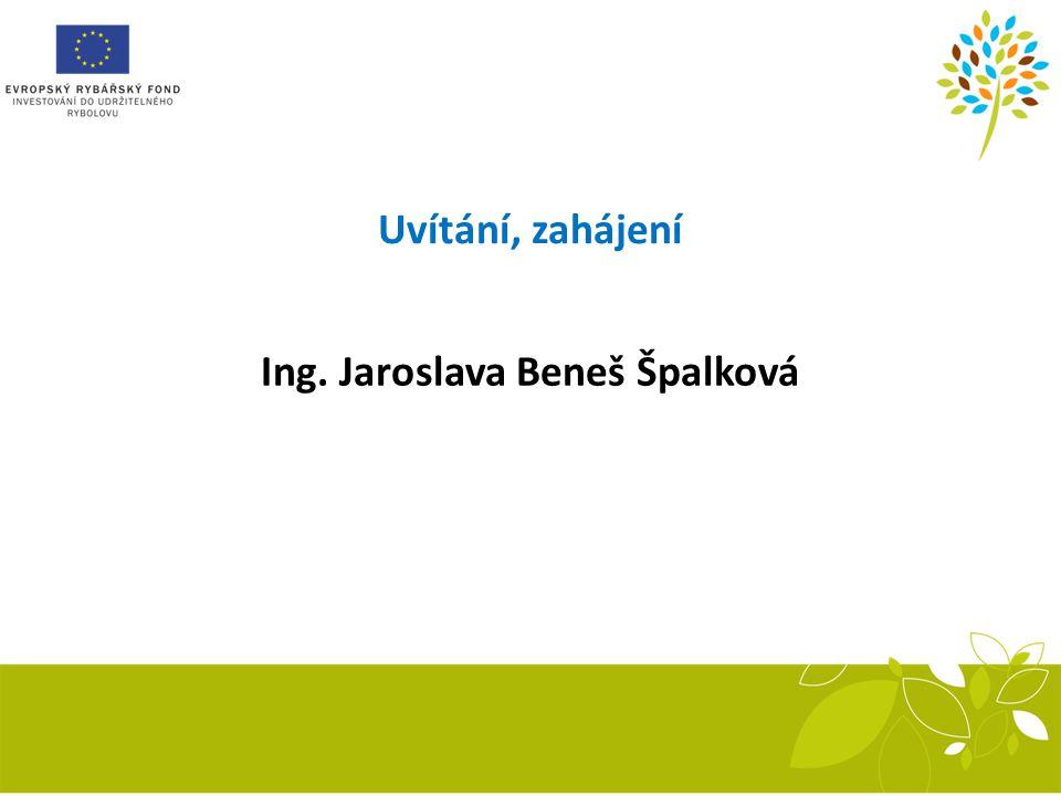 Ing. Jaroslava Beneš Špalková