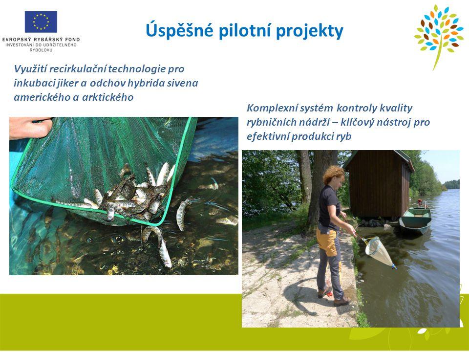Úspěšné pilotní projekty