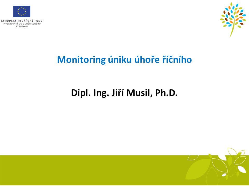 Monitoring úniku úhoře říčního
