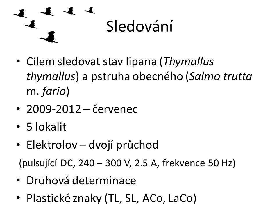 Sledování Cílem sledovat stav lipana (Thymallus thymallus) a pstruha obecného (Salmo trutta m. fario)