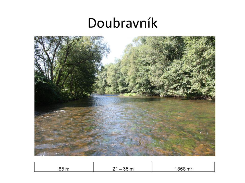 Doubravník 85 m 21 – 35 m 1868 m2