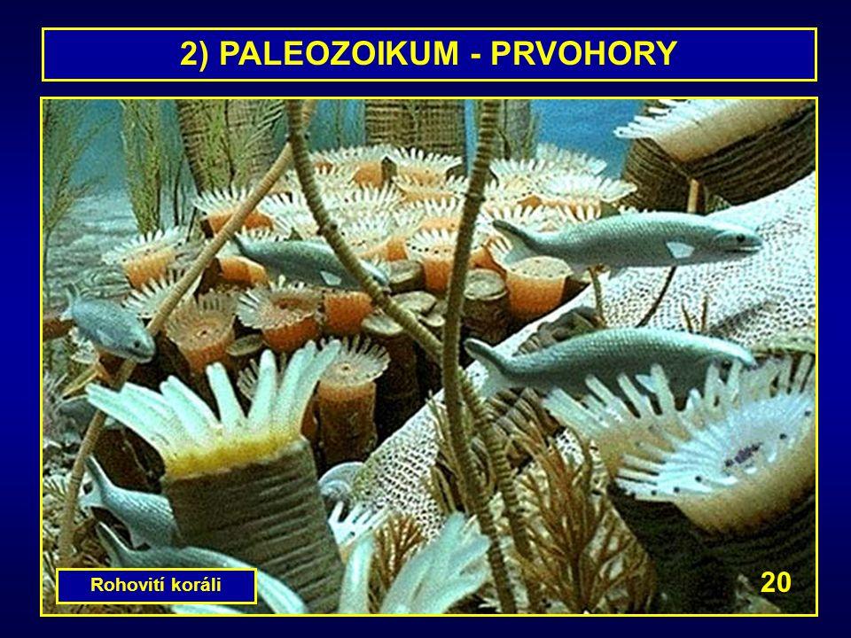 2) PALEOZOIKUM - PRVOHORY