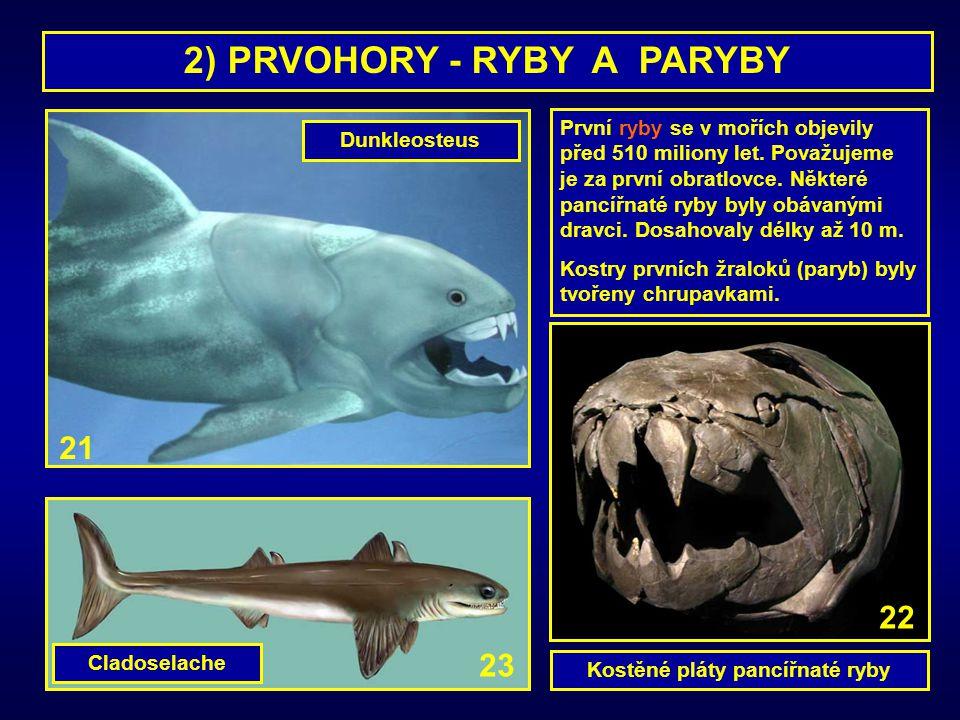 2) PRVOHORY - RYBY A PARYBY Kostěné pláty pancířnaté ryby