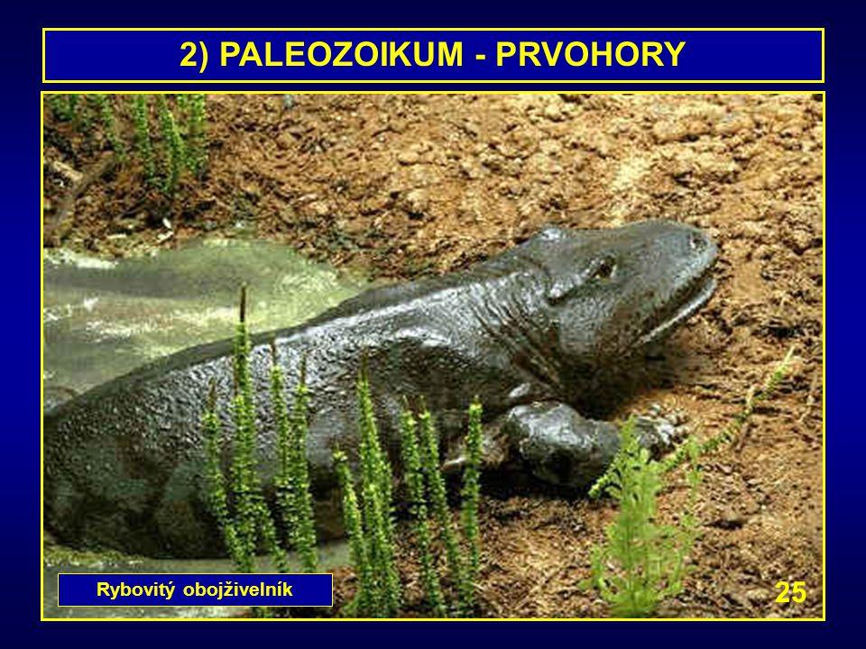 2) PALEOZOIKUM - PRVOHORY Rybovitý obojživelník