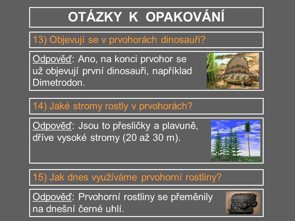 OTÁZKY K OPAKOVÁNÍ 13) Objevují se v prvohorách dinosauři