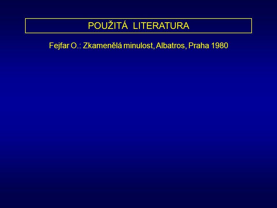 Fejfar O.: Zkamenělá minulost, Albatros, Praha 1980