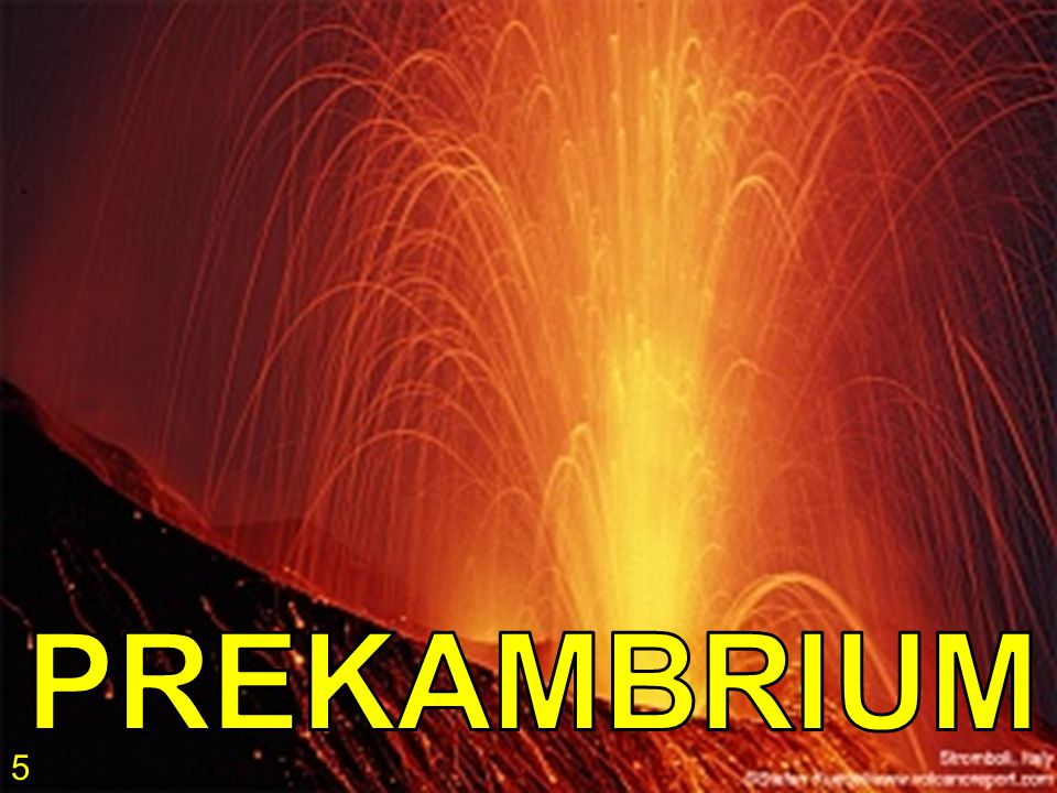 PREKAMBRIUM 5