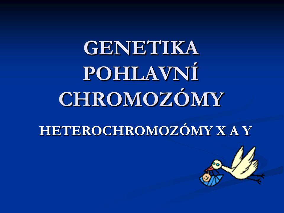 GENETIKA POHLAVNÍ CHROMOZÓMY