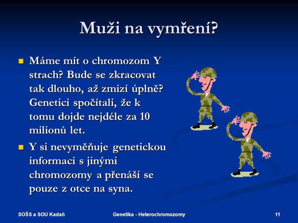 Genetika - Heterochromozomy