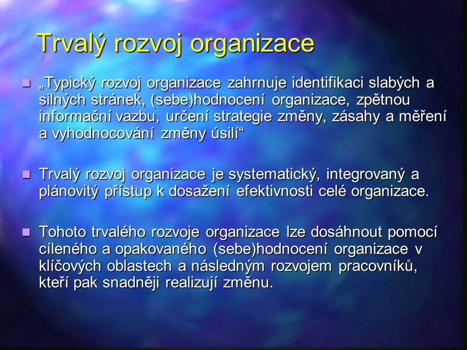 Trvalý rozvoj organizace