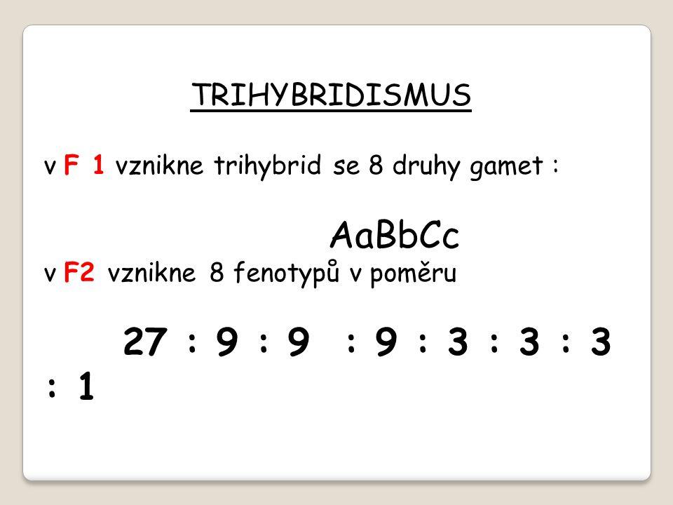 TRIHYBRIDISMUS v F 1 vznikne trihybrid se 8 druhy gamet : AaBbCc