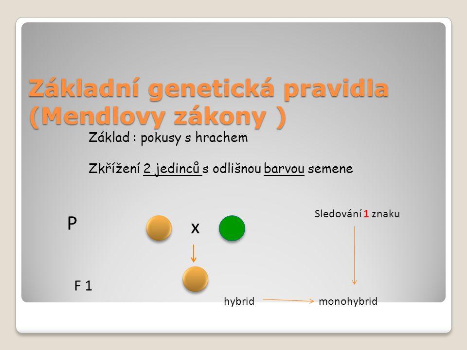 Základní genetická pravidla (Mendlovy zákony )
