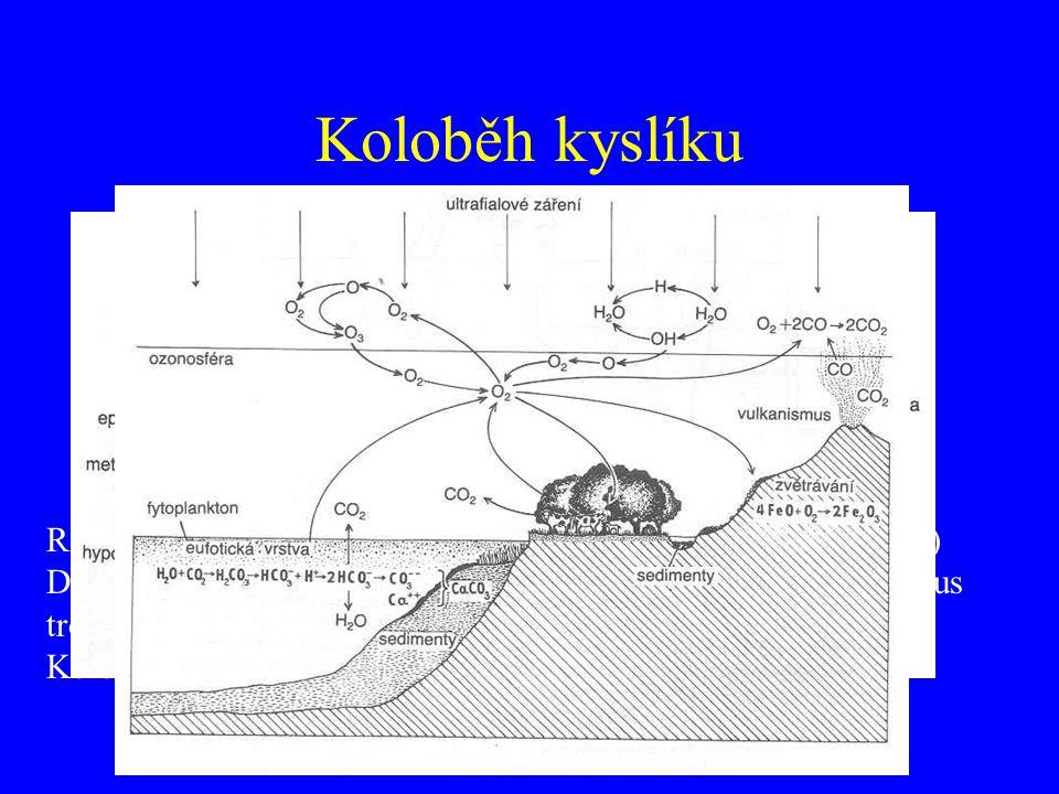 Koloběh kyslíku Rozpustnost ve vodě – teplota, tlak, plocha aj.