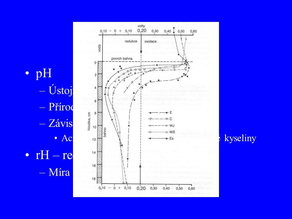pH a rH pH rH – redox potenciál Ústojný systém