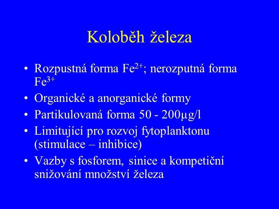 Koloběh železa Rozpustná forma Fe2+; nerozputná forma Fe3+