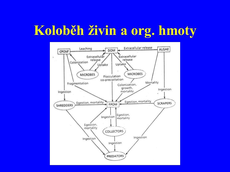 Koloběh živin a org. hmoty
