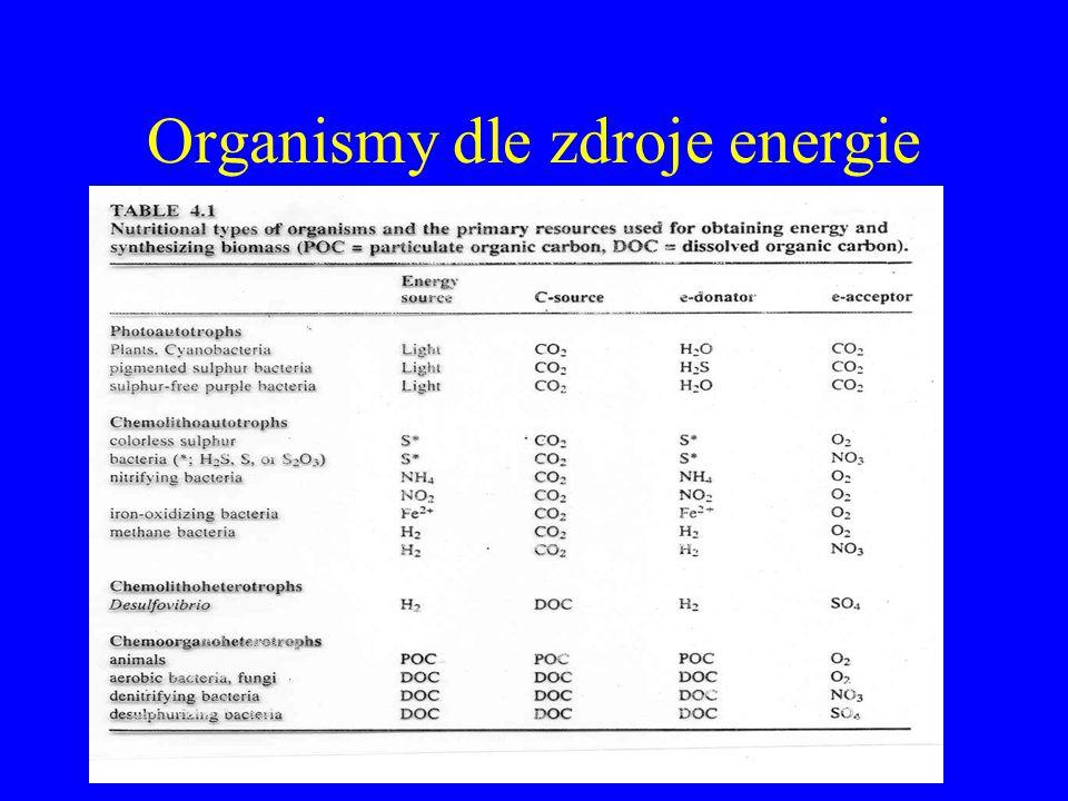 Organismy dle zdroje energie