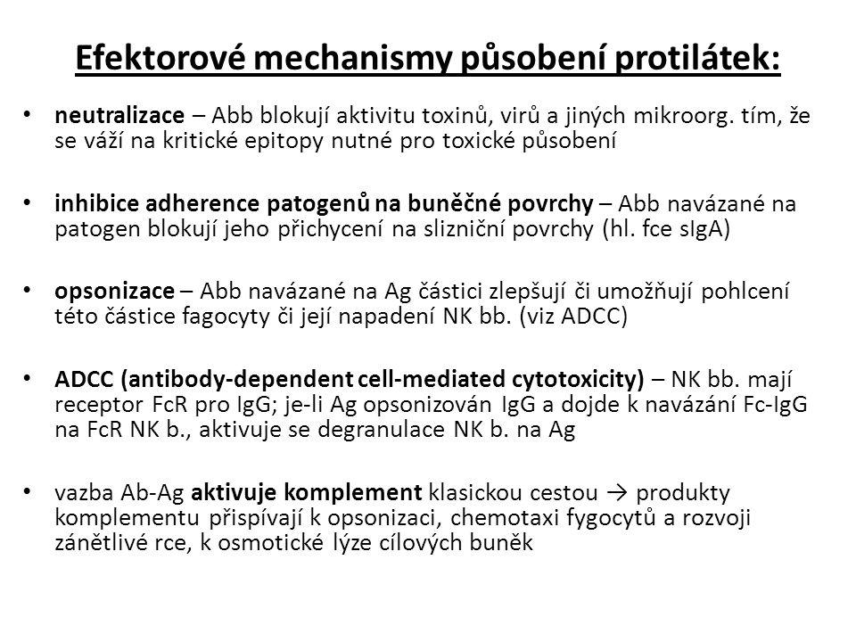 Efektorové mechanismy působení protilátek: