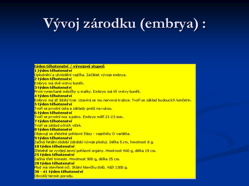Vývoj zárodku (embrya) :