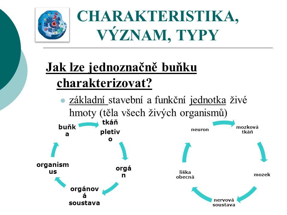 CHARAKTERISTIKA, VÝZNAM, TYPY