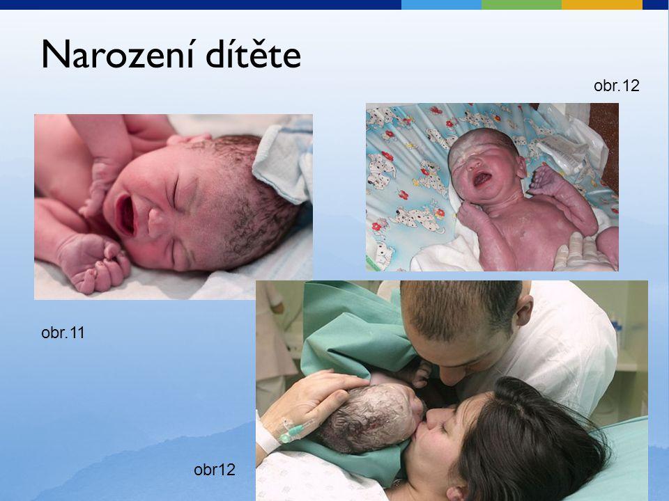 Narození dítěte obr.12 obr.11 obr12