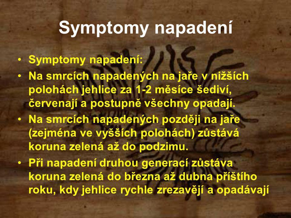 Symptomy napadení Symptomy napadení: