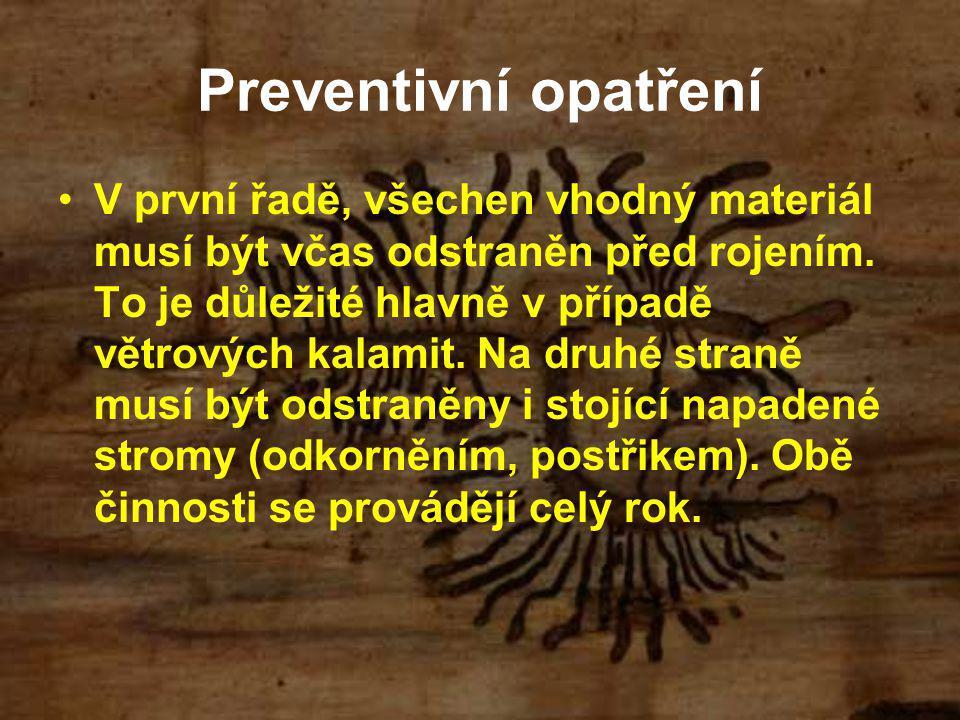 Preventivní opatření