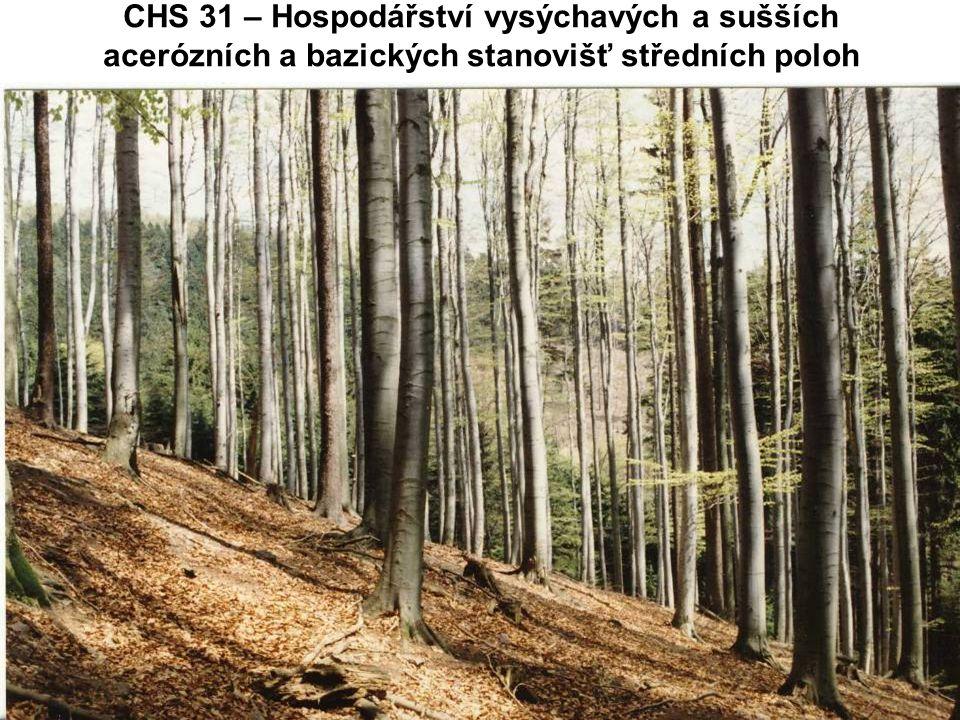 CHS 31 – Hospodářství vysýchavých a sušších acerózních a bazických stanovišť středních poloh