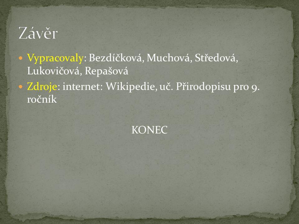 Závěr Vypracovaly: Bezdíčková, Muchová, Středová, Lukovičová, Repašová