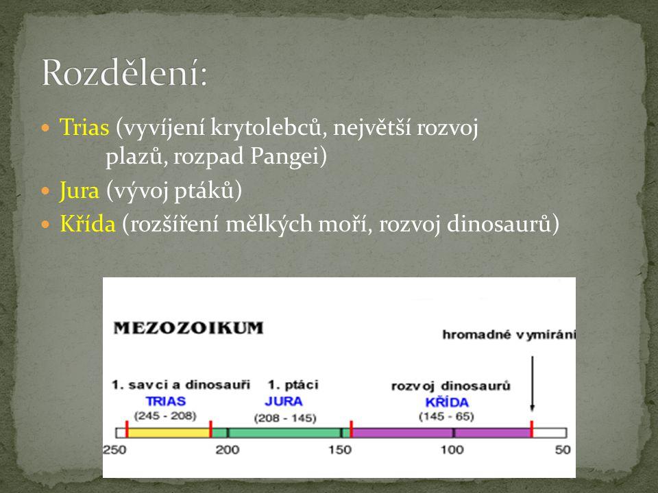 Rozdělení: Trias (vyvíjení krytolebců, největší rozvoj plazů, rozpad Pangei) Jura (vývoj ptáků)