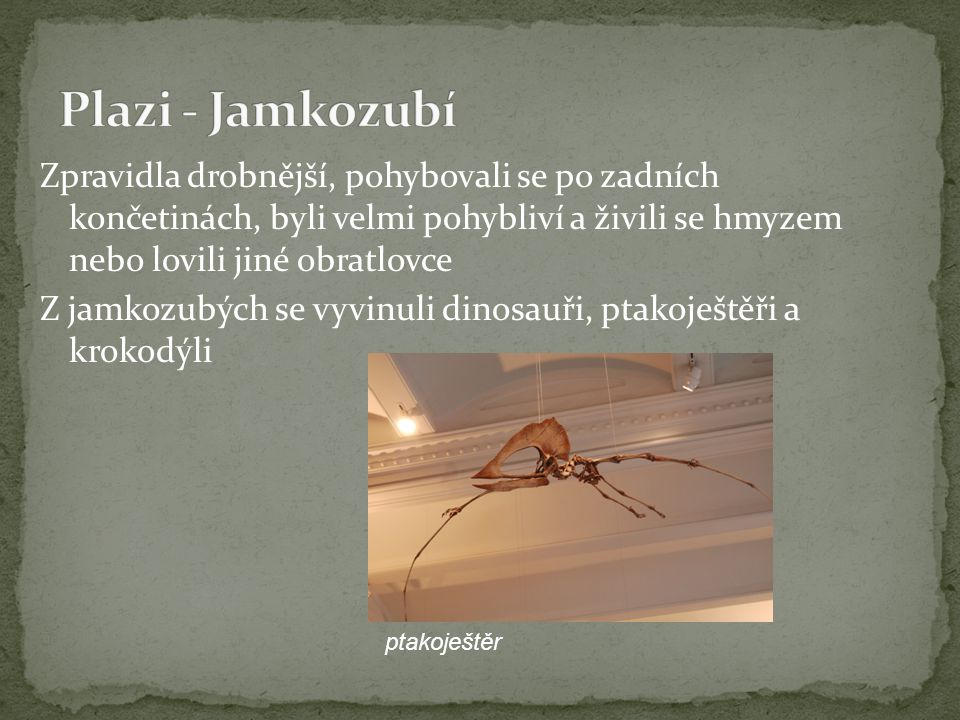 Plazi - Jamkozubí