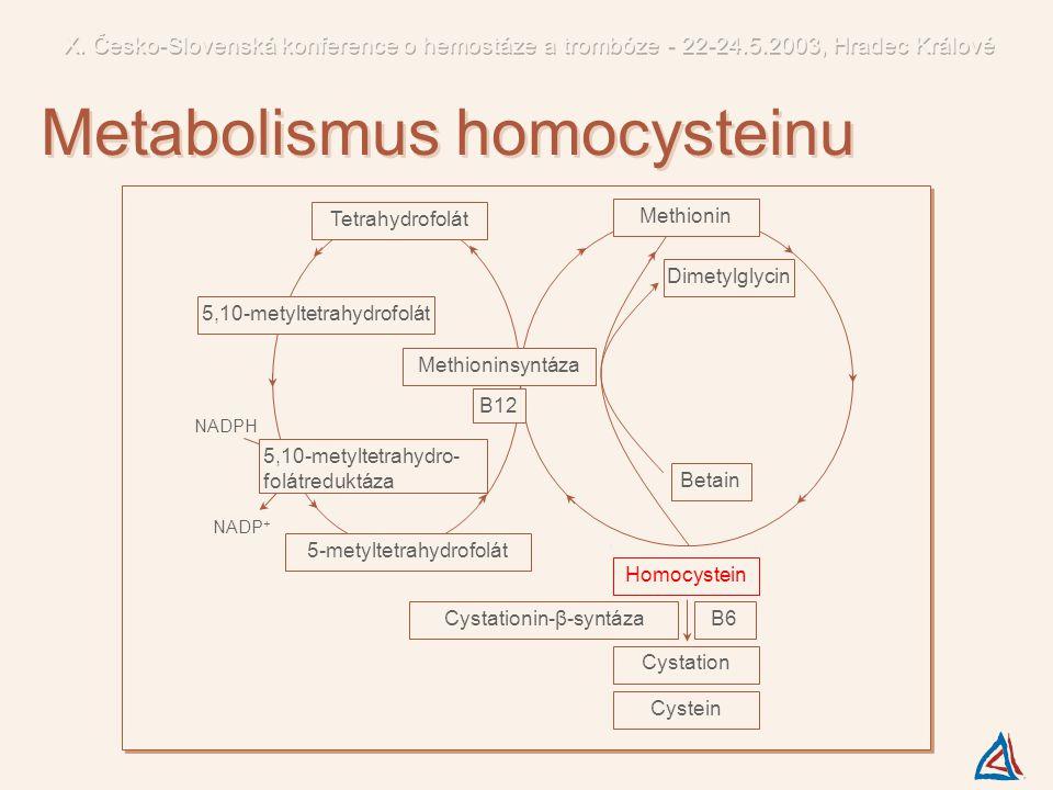 Metabolismus homocysteinu