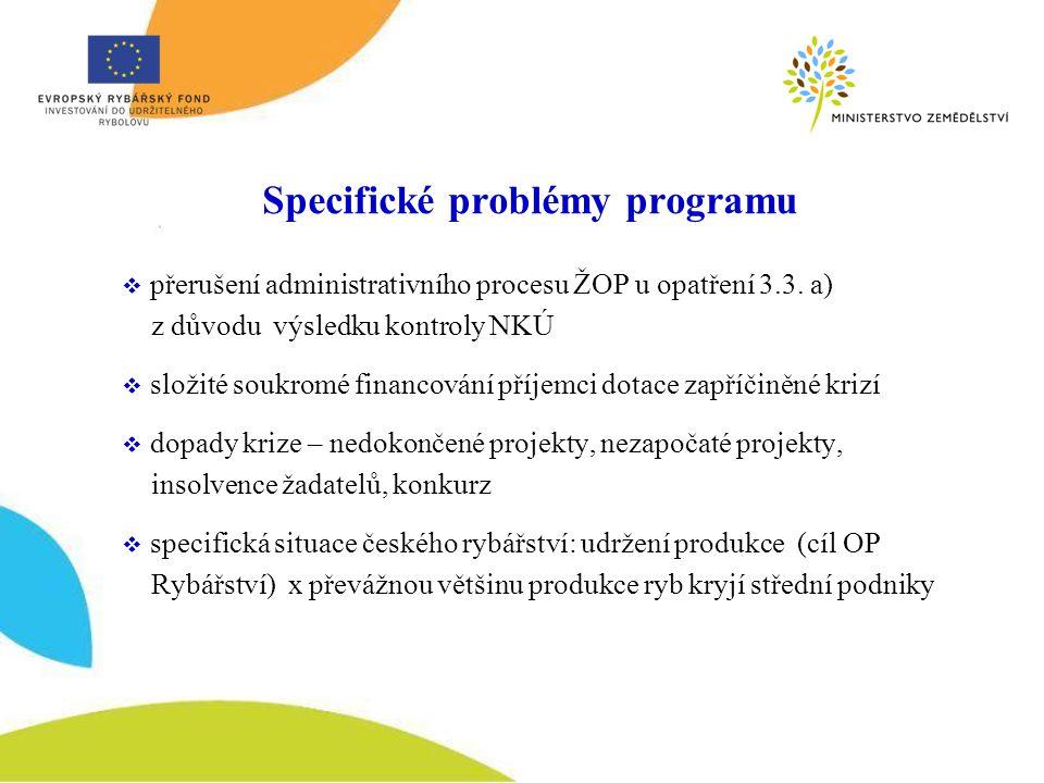 Specifické problémy programu