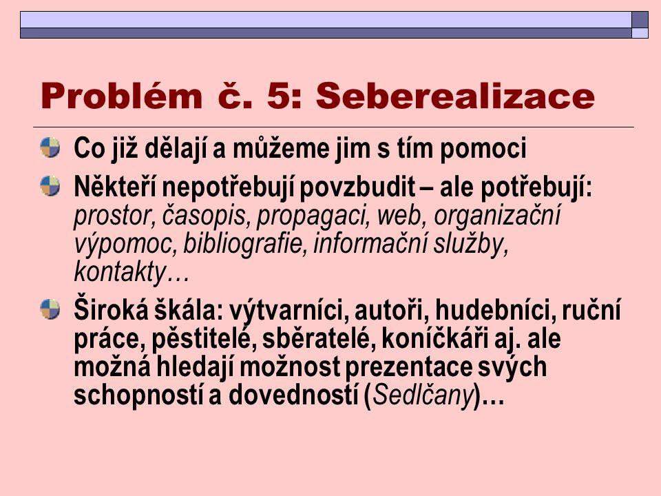Problém č. 5: Seberealizace
