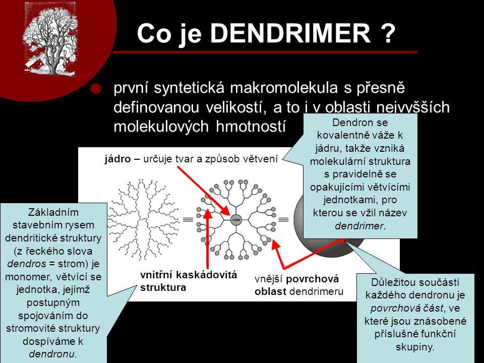 Co je DENDRIMER první syntetická makromolekula s přesně