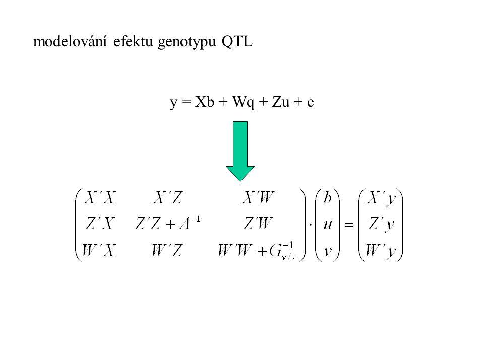 modelování efektu genotypu QTL