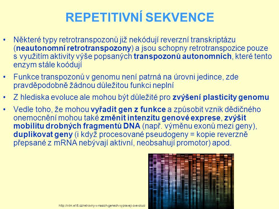 REPETITIVNÍ SEKVENCE