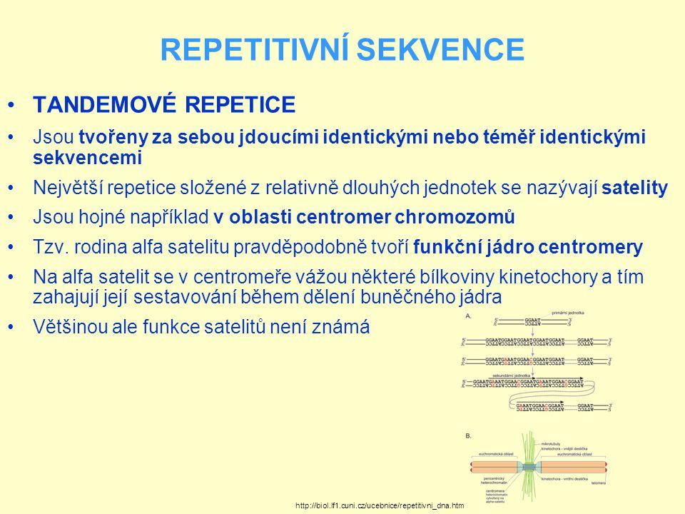 REPETITIVNÍ SEKVENCE TANDEMOVÉ REPETICE