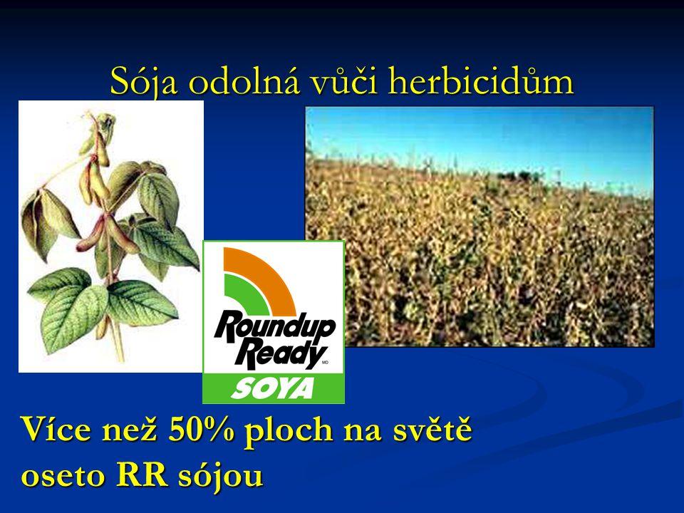 Sója odolná vůči herbicidům