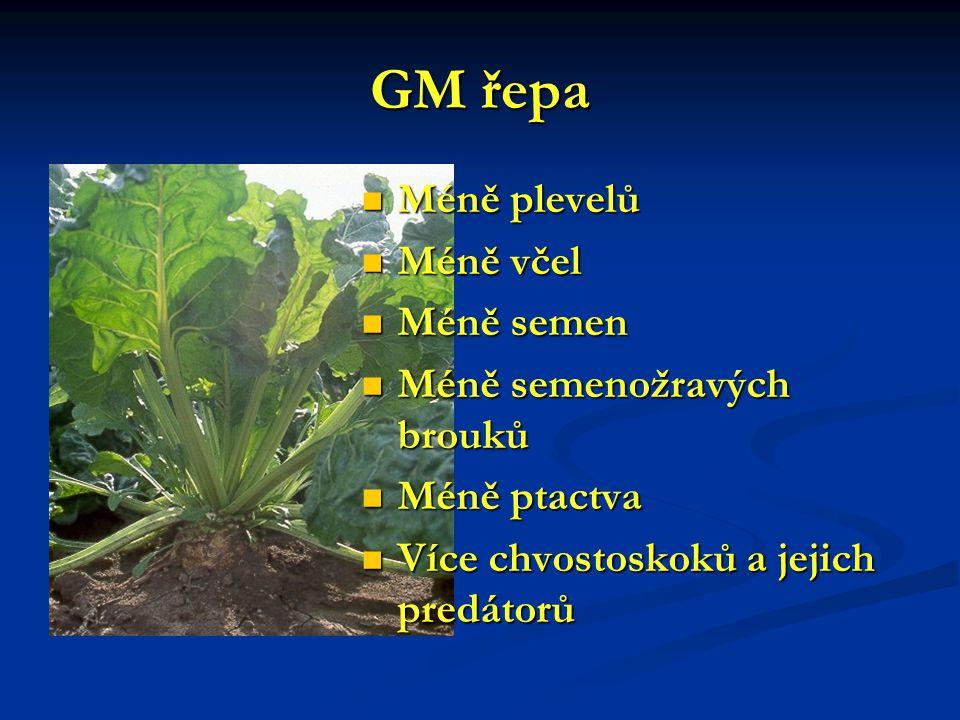 GM řepa Méně plevelů Méně včel Méně semen Méně semenožravých brouků