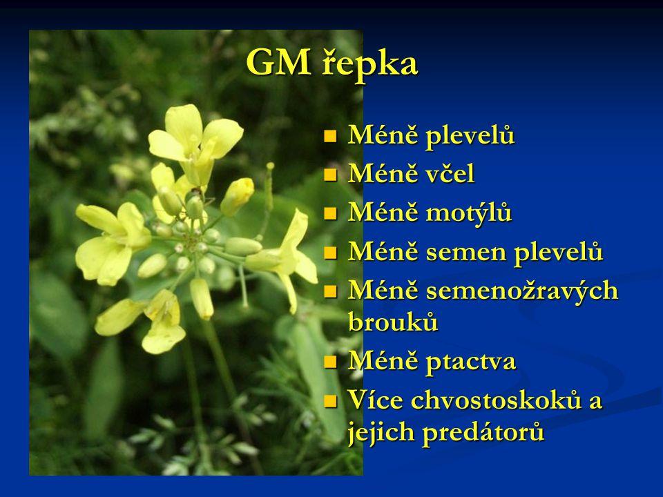 GM řepka Méně plevelů Méně včel Méně motýlů Méně semen plevelů