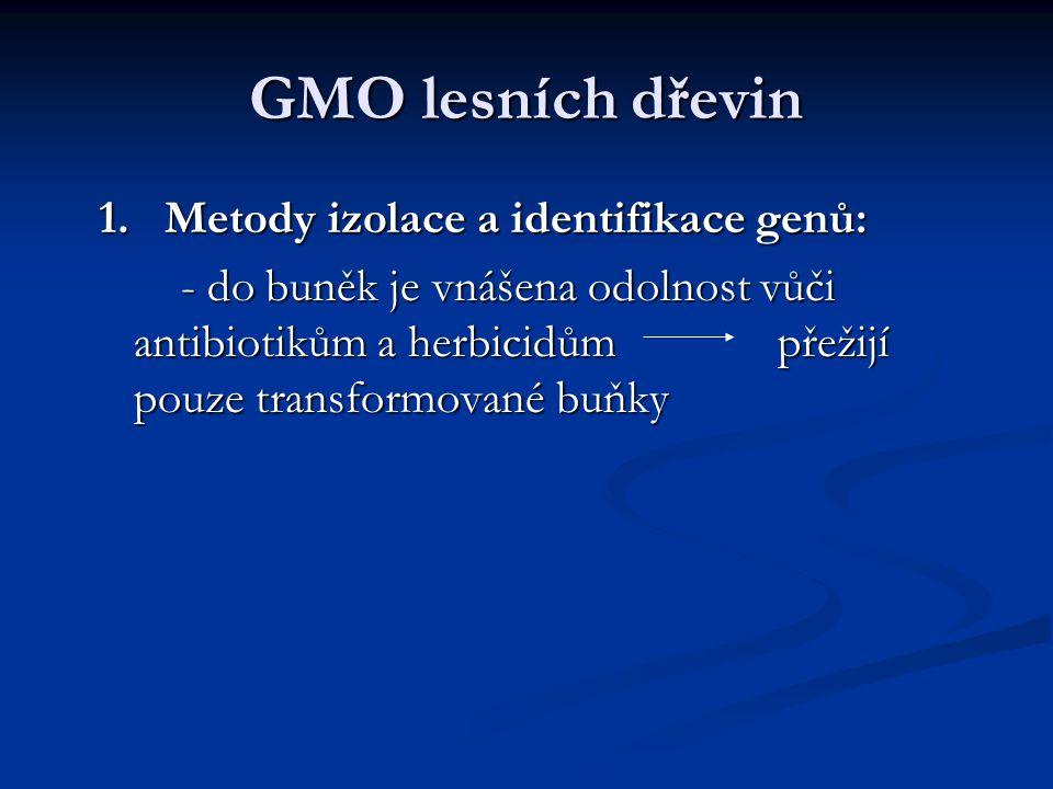 GMO lesních dřevin 1. Metody izolace a identifikace genů: